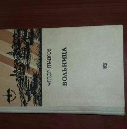 Book Fedor Gladkov