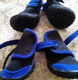 Pantofi pentru câinele tău