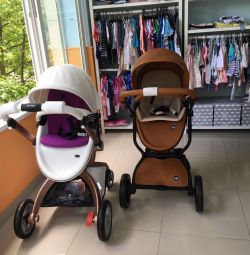Stroller 2 in 1 from 0 to 3 years