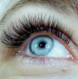 Extension, lamination and Botox eyelashes.