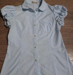 Bluz mavisi büyüme 140
