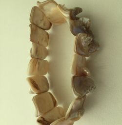 Bracelet made of shells, pearly