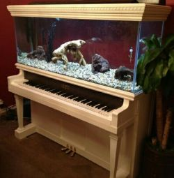 Aquarium / terrarium from the piano.handwork.new