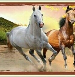 Puzzles Two horses 260