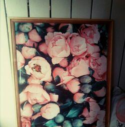 Picturi (postere)