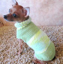 Bluze pentru câini în raza de acțiune