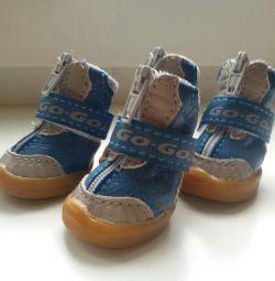 Νέα μεγέθη παπουτσιών 1