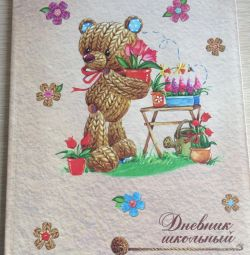 Diary for primary classes