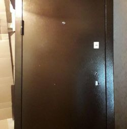 Entrance metal door