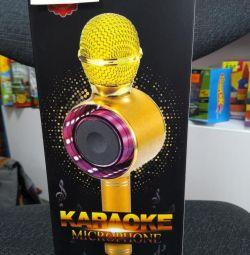 WS-668 hoparlörü olan kablosuz karaoke mikrofonu