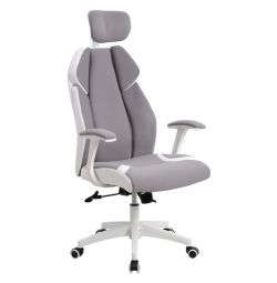 OFFICE CHAMBER DIRECTOR HM1086.10 IN GRAY LEY