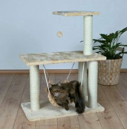Casa pentru pisici