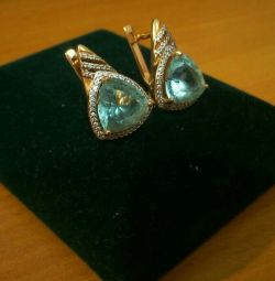 Earrings 585 sample