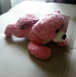 Bear lying