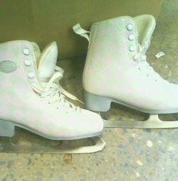 Skates p36