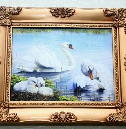 Painting Canvas of Swans Photo printing
