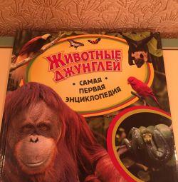 Книга «Животные джунглей»