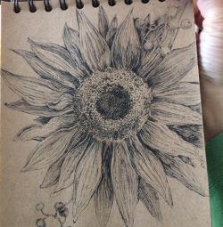 Grafice de floarea soarelui