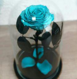 Rose într-un balon