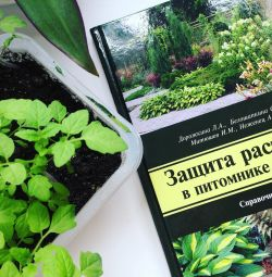 Plant protection in the nursery and garden. Directory.