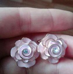 Νέα σκουλαρίκια.