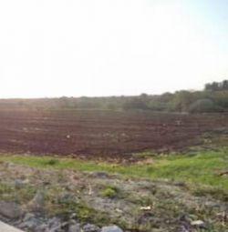 Сельскохозяйственное поле в Анарите, Пафос