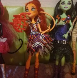 Dolls monster high.Casta firms and Torale circus