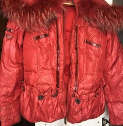 Yeni ceket aşağı ceket