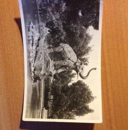 1965 yılında Krasnodar kentinin kartpostalları