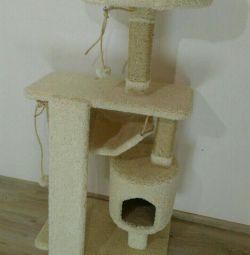 Pisoi, complex cu o casa pentru o pisica