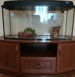 Aquarium with a pedestal