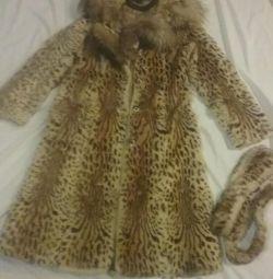 Fur of reed cat r-p 48-50.