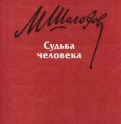 M. Sholokhov Soarta omului