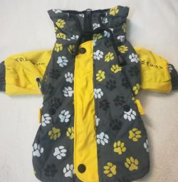 Clothing for dogs. ,, S ,,
