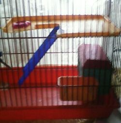 Cage for Dzungarian hamster