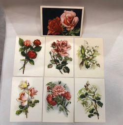 Открытки «Цветы» 1954 год, 9 штук