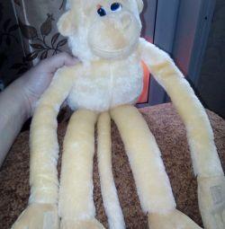 maimuță