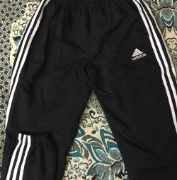 pants adidas fits on size S