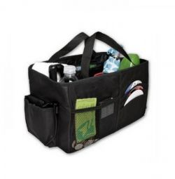 Organizer for cars