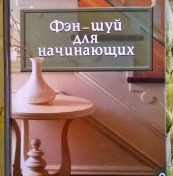 Олена Стьопіна: Фен-шуй для початківців