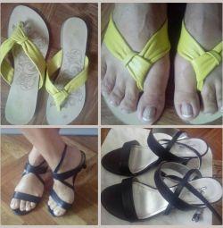 Sandals Shale