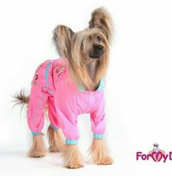 Raincoat pink (clothes for dogs)