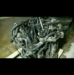 Ford Transit Engine