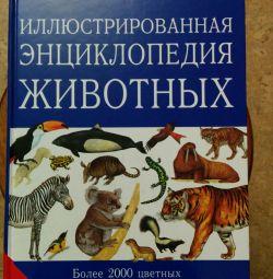 Illustrated Encyclopedia of Animals