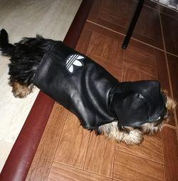 Куртка для собаки из натуральной кожи