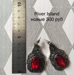 New catchy earrings