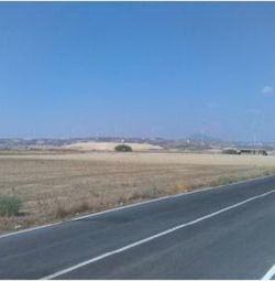 Agricultural Field in Tersefanou, Larnaca