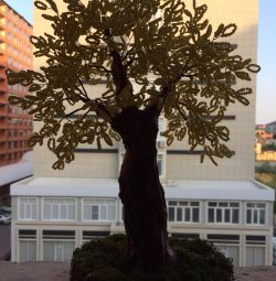 Δέντρο χάντρα