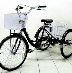 Bike tricycle adult