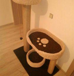 Kediler için kompleks, bir ev ile yavru kedi
